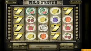 Wild Fruits Slots Online Review